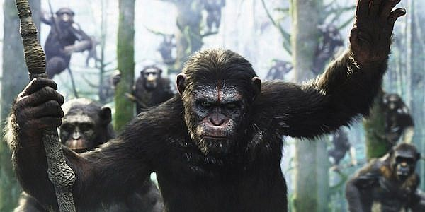 planet_of_the_apes_95547