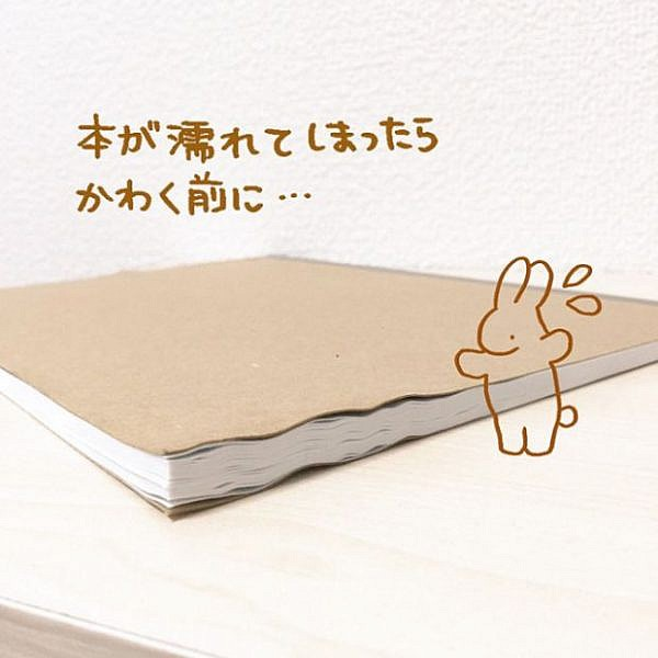 how-to-fix-wet-book-pages-with-a-simple-japanese-life-hack-1