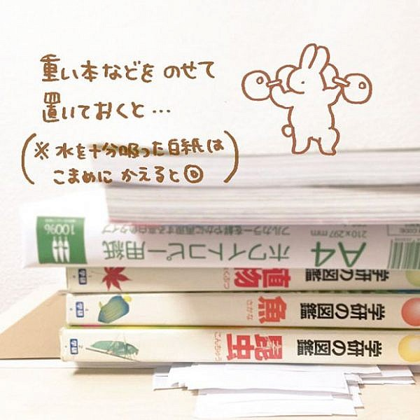 how-to-fix-wet-book-pages-with-a-simple-japanese-life-hack-3