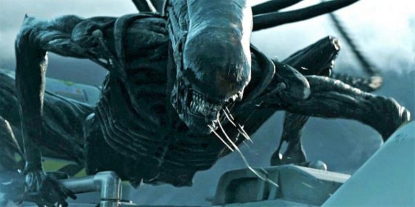 Xenomorph-in-Alien-Covenant-e14887105189