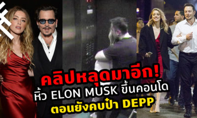 Amber Heard Elon Musk Johnny Depp
