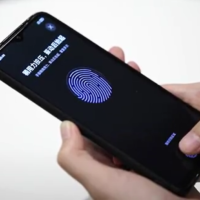 in display fingerprint