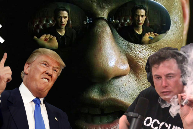 Take the Red Pill Donald Trump Elon Musk The Matrix