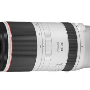 Canon RF 100-500mm f/4-7.1 L IS USM