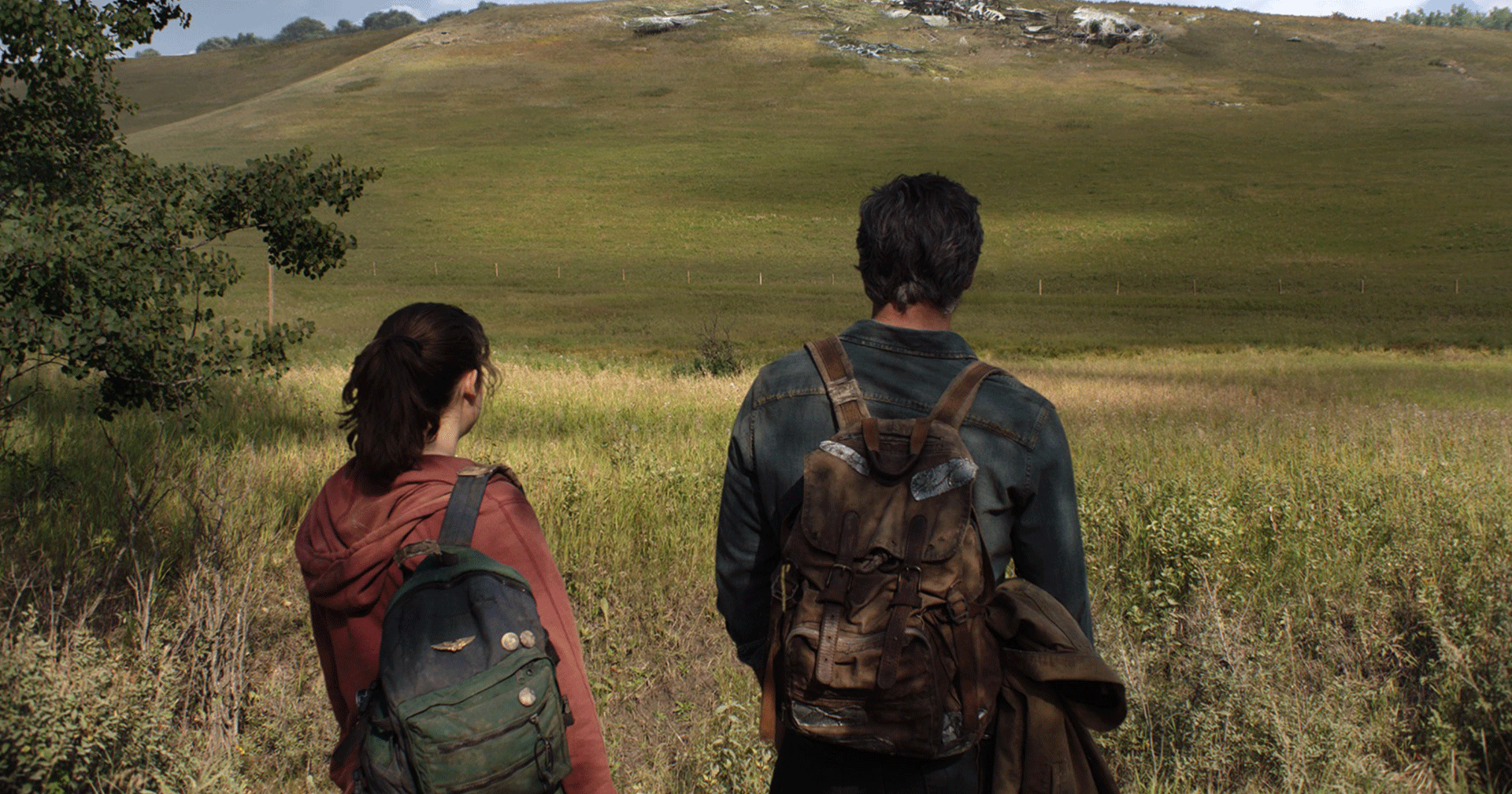 The Last of Us (HBO)